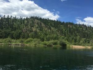 CDA River